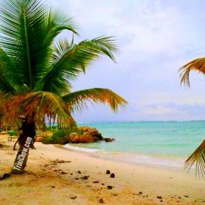 RENMAR'S RESTAURANT & BAR (Pigeon Point,Tobago)