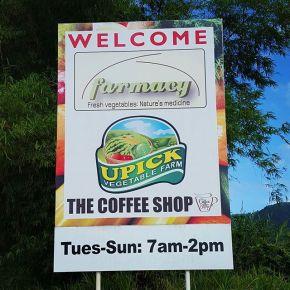 U PICK FARM (Chaguaramas,Trinidad)